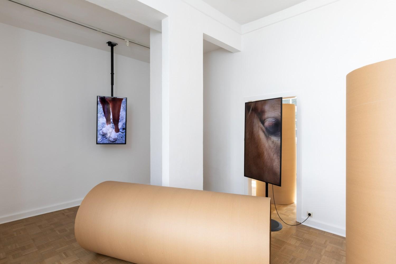 """Die Arbeit """"We will soon find out"""" von Beatriz Olabarrieta erzeugt ein retadierendes Moment. Im Zusammenspiel von Videos und Objekten wird ein Zustand des gespannten Verharrens erzeugt, der ein kommendes, unbenanntes Ereignis antizipiert."""
